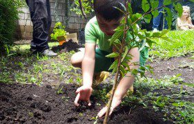 Small changes to help the enviroment: carbon neutral kindergarten's tips