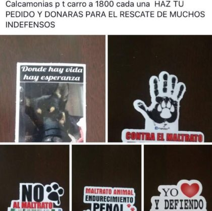 Vida Animal Costa Rica-Facebook