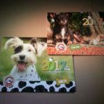 Get an ANPA calendar and help stray dogs and cats!