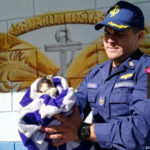 NCG rescued injured hawk in Guanacaste